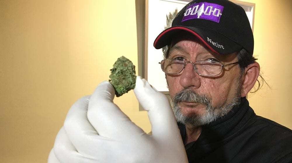 Gerald Bear, Director of the Tribal ReLeaf Medicinal marijuana dispensary 1000 x 560