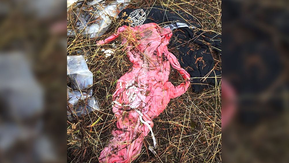 A pink shirt left discarded in the woods. Photo: Wendy Mohr.