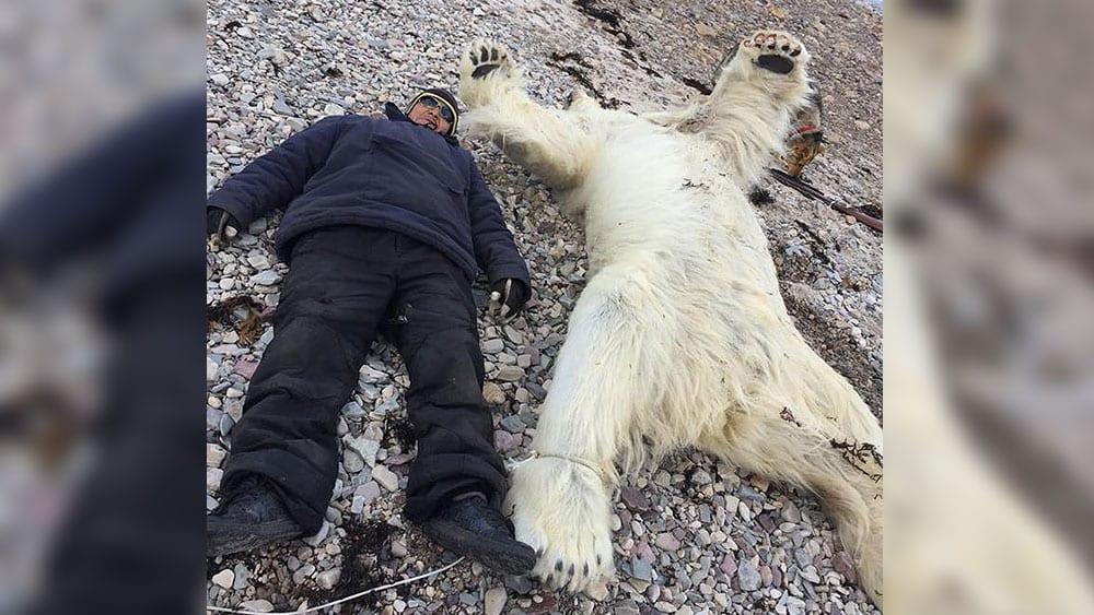 Issiah Oyukuluk lies next to dead polar bear in Arctic Bay, Nunavut.