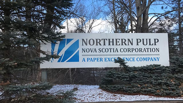 N S  asks for more study of Northern Pulp wastewater