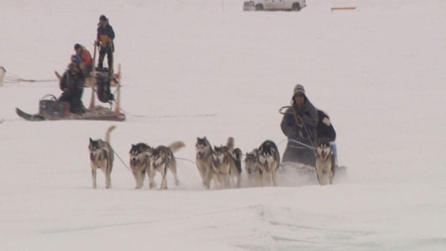 Federal government apologizes to Inuit for historic sled dog killings in the North - APTN News