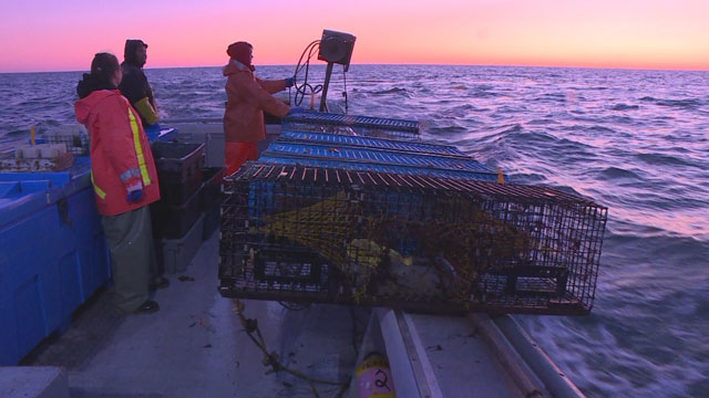 20 years ago the Supreme Court ruled on Mi'kmaq fishing rights, so what has changed? - APTN News